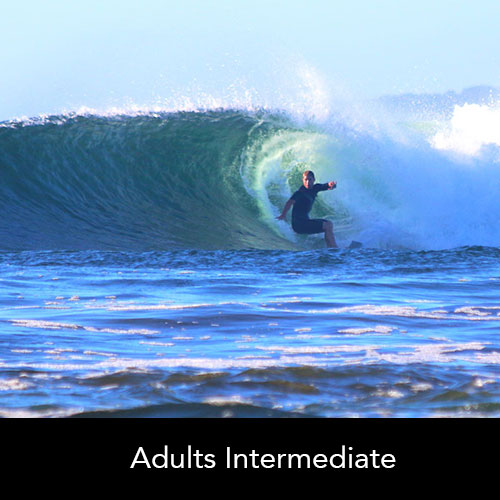 Adults Cronulla Surfing Academy